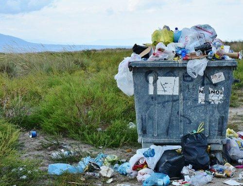 7 мита за рециклирането