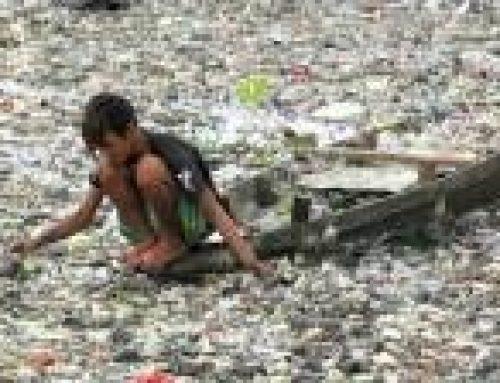 """Колко години """"живеят"""" отпадъците?"""